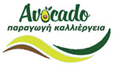 avocado nursery europe-Greece