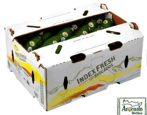 Χαρτοκιβώτιο συσκευασίας αβοκάντο